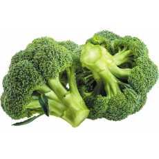 25 Pcs Broccoli Seeds - Vegetable Seeds imported from  (sakata Japan)